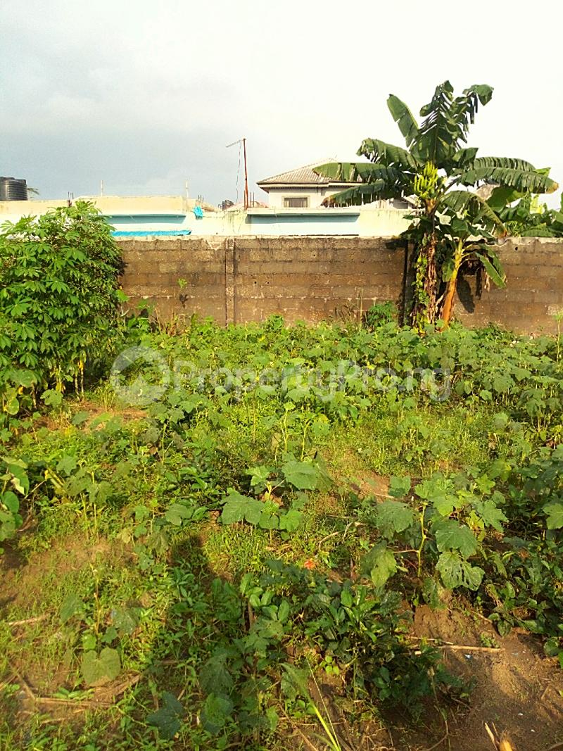 Residential Land Land for sale Elioparanwo Port Harcourt Rivers - 4