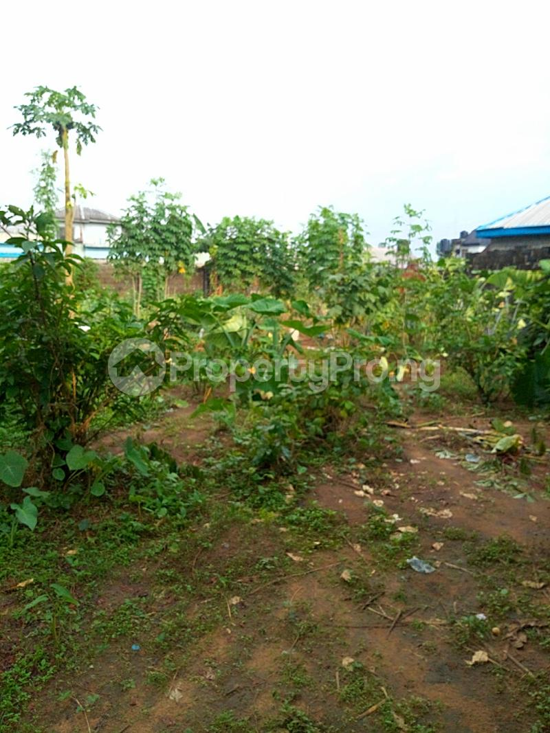 Residential Land Land for sale Elioparanwo Port Harcourt Rivers - 2