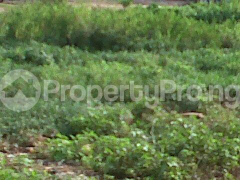 Mixed   Use Land Land for sale - Ajao Estate Isolo Lagos - 0