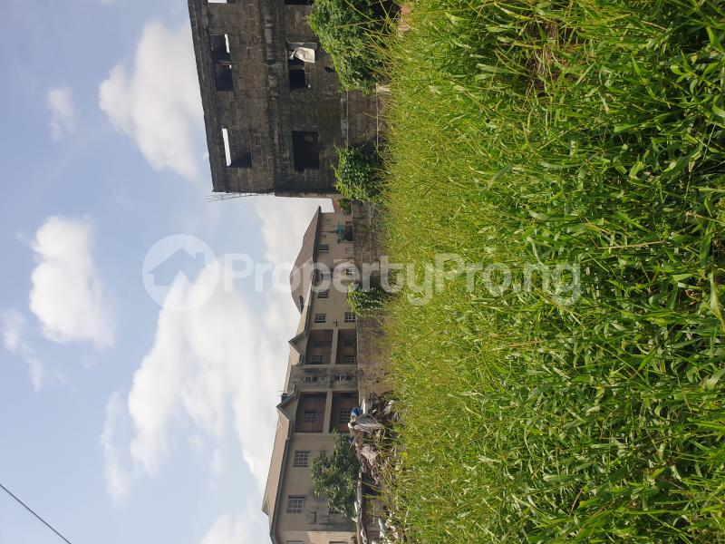 Mixed   Use Land Land for sale Babs Animashaun Street  Bode Thomas Surulere Lagos - 2
