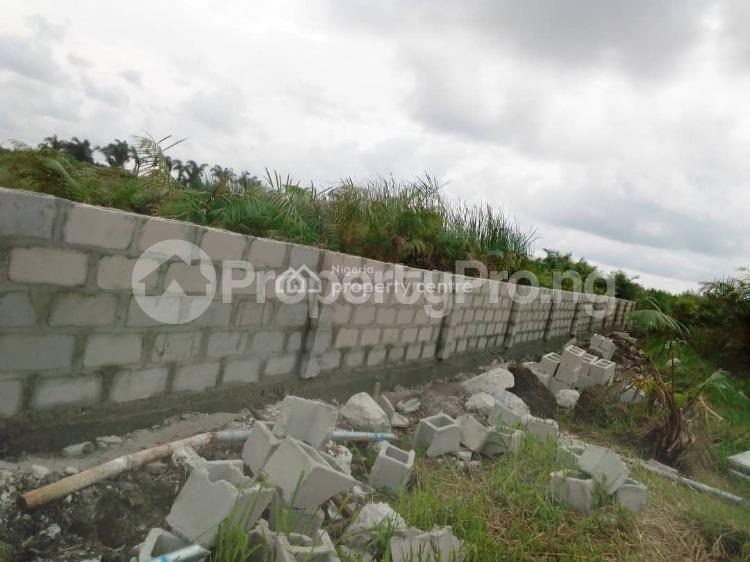 Mixed   Use Land Land for sale Champions Court, Behind Amen Estate Phase 1, Eleko Ibeju-Lekki Lagos - 3
