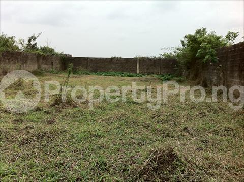 Residential Land Land for sale Housing Area U A Owerri Imo - 6