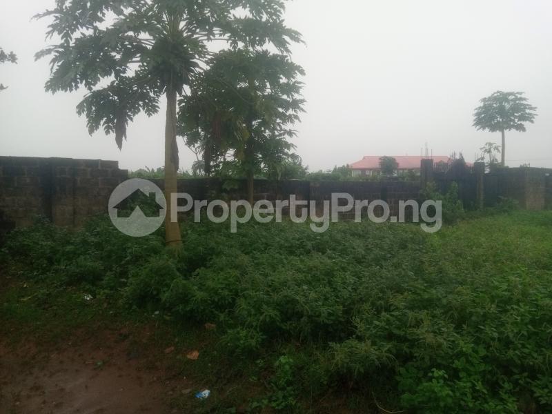 Land for sale Ikola command Ipaja Ipaja Lagos - 1