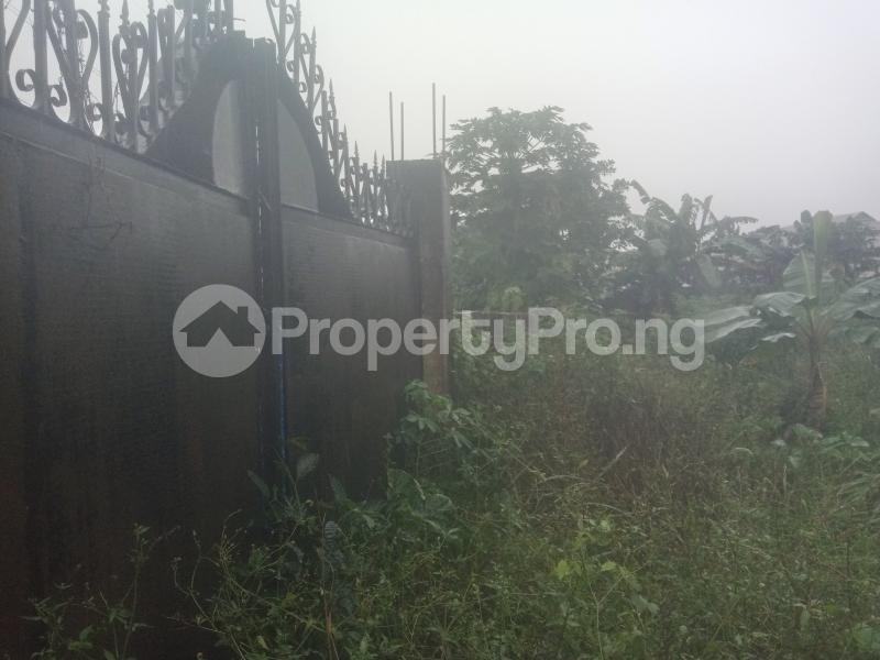 Land for sale Ikola command Ipaja Ipaja Lagos - 3