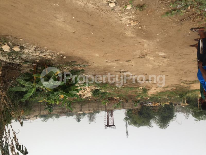 Residential Land Land for sale E1 Estate, Lemna Road Calabar Cross River - 5