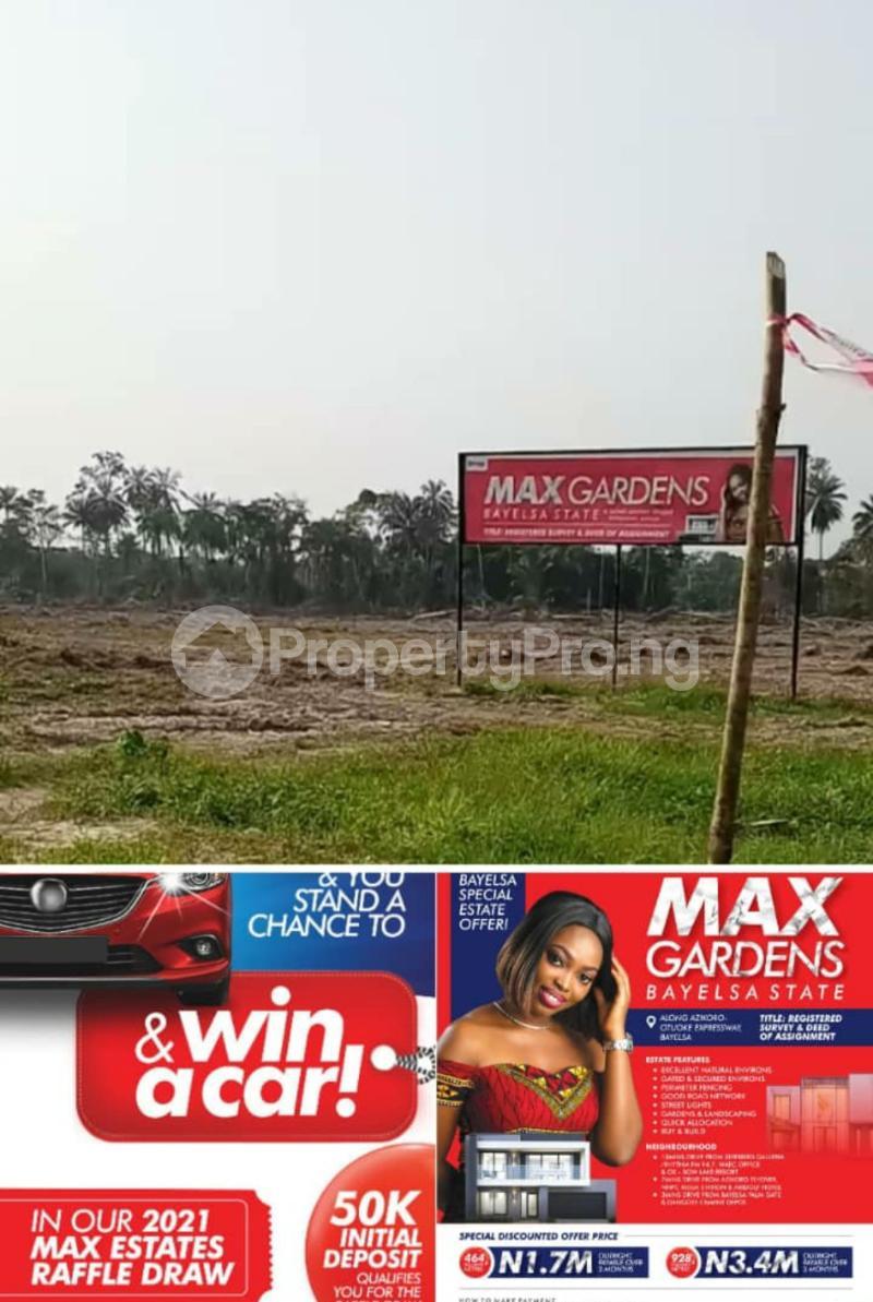 Mixed   Use Land Land for sale Yenegoa Bayelsa - 1