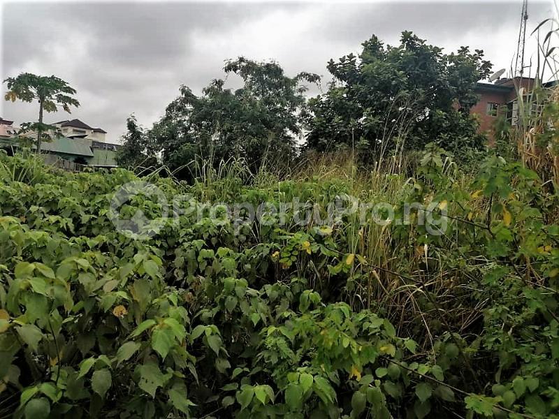 Commercial Land for rent Lagos Abeokuta Express Road,ijako Sango Otta Sango Ota Ado Odo/Ota Ogun - 3