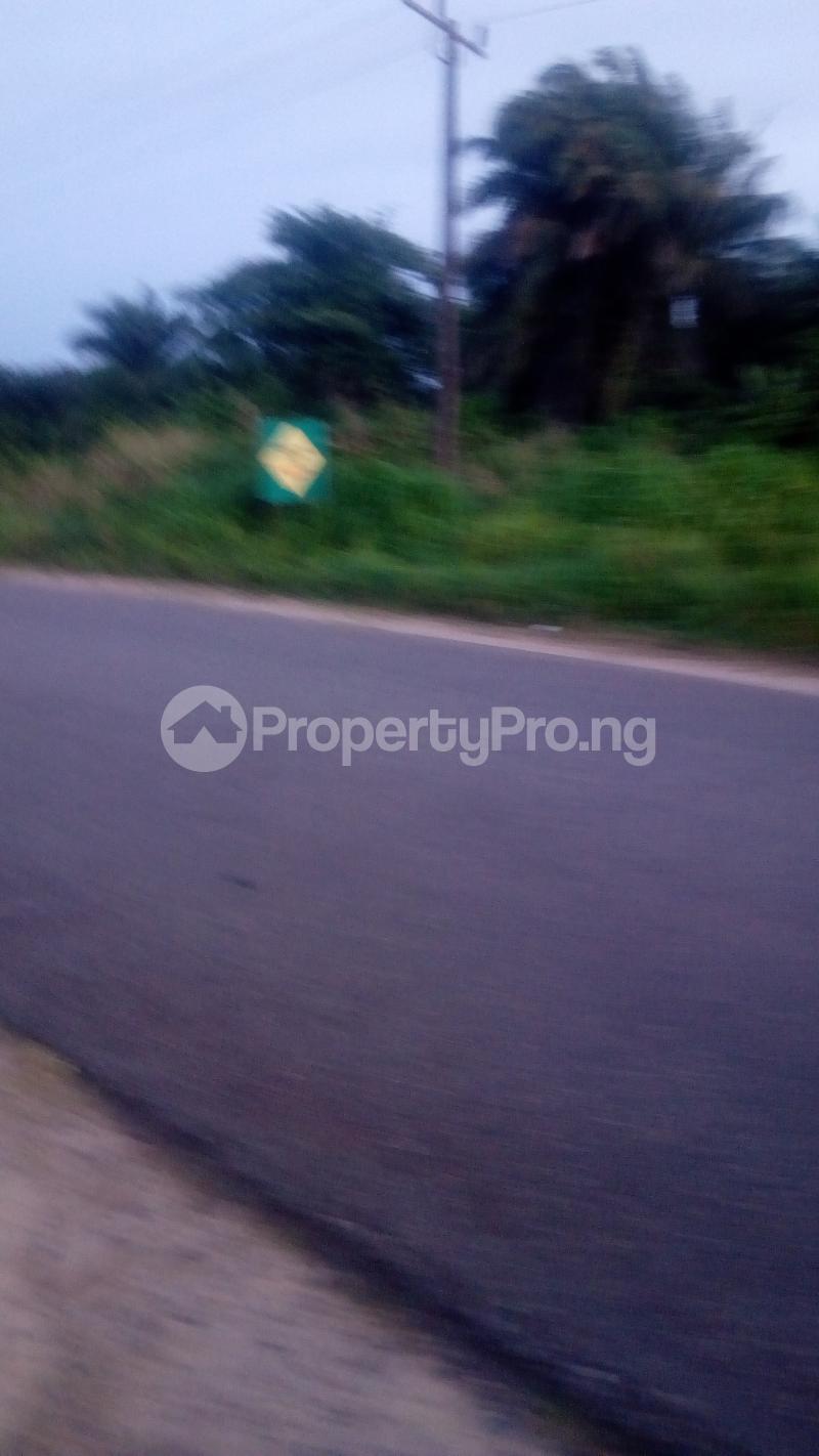 Commercial Land for sale New Haven Round About Enugu Enugu - 1