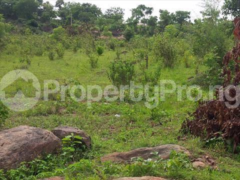 Mixed   Use Land Land for sale . Iganmu Orile Lagos - 1