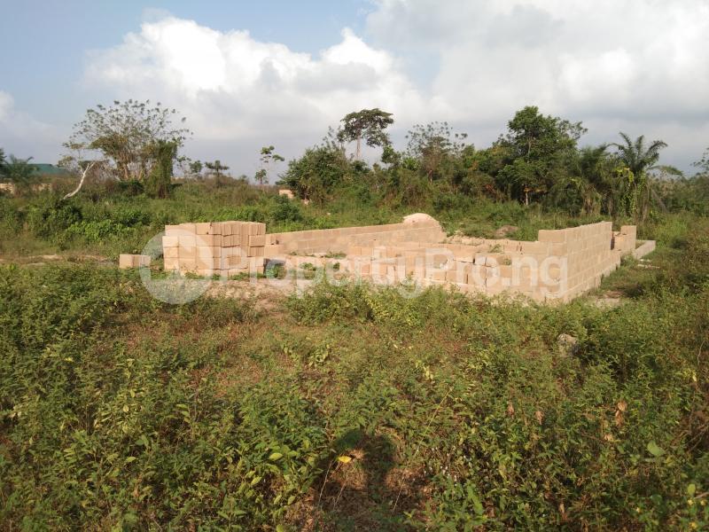 Residential Land Land for sale BEDAKU Egbeda Ibadan. Egbeda Oyo - 1