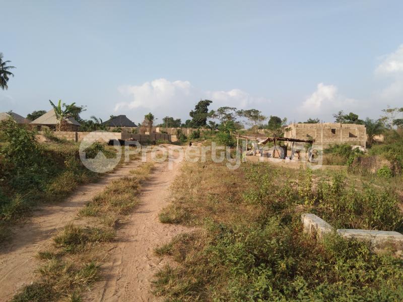 Residential Land Land for sale BEDAKU Egbeda Ibadan. Egbeda Oyo - 2