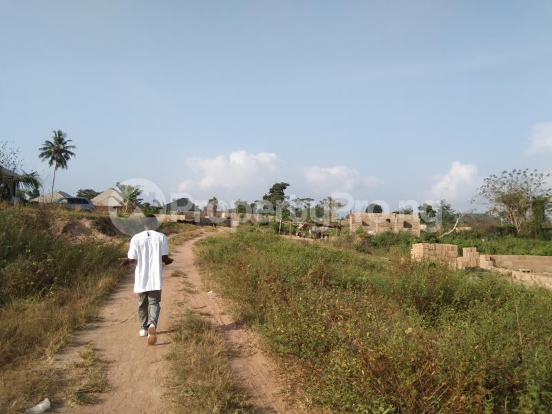 Residential Land Land for sale BEDAKU Egbeda Ibadan. Egbeda Oyo - 4