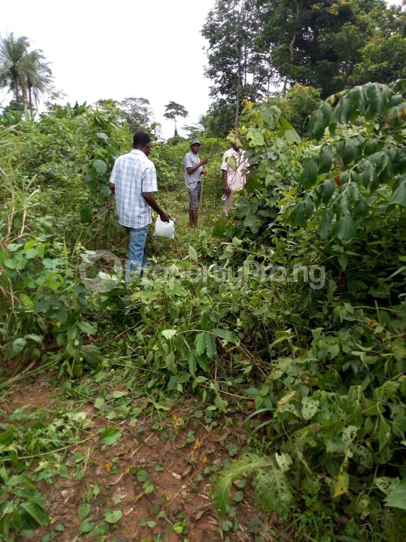 Mixed   Use Land Land for sale Ute Community, Ward 6 Uhunmwode Local Government Along Oluku Bypass Benin City Uhunmwonde Edo - 7