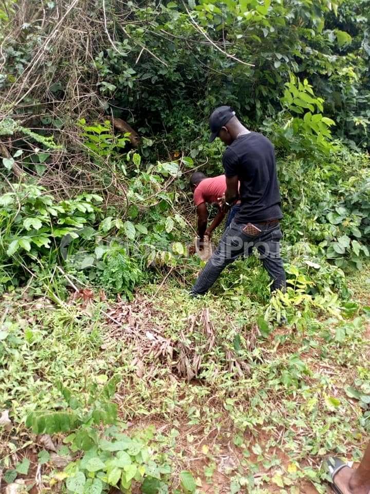 Mixed   Use Land Land for sale Ute Community, Ward 6 Uhunmwode Local Government Along Oluku Bypass Benin City Uhunmwonde Edo - 8