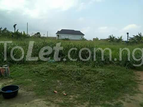 4 bedroom Commercial Property for sale isheri idimu council Egbe/Idimu Lagos - 4