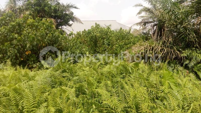 Residential Land Land for sale Akesan igando Akesan Alimosho Lagos - 0