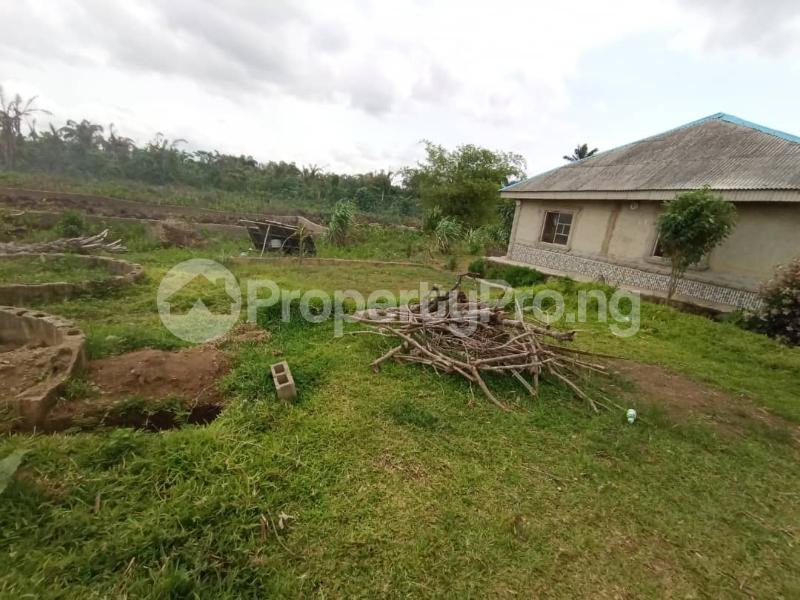 Residential Land for sale Itele Ogun State Ijebu Ogun - 3