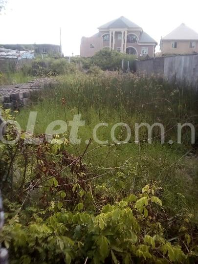 Land for sale ijegu Ojo Ojo Lagos - 3