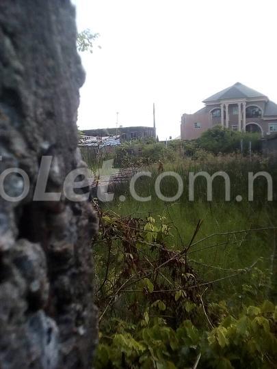 Land for sale ijegu Ojo Ojo Lagos - 2