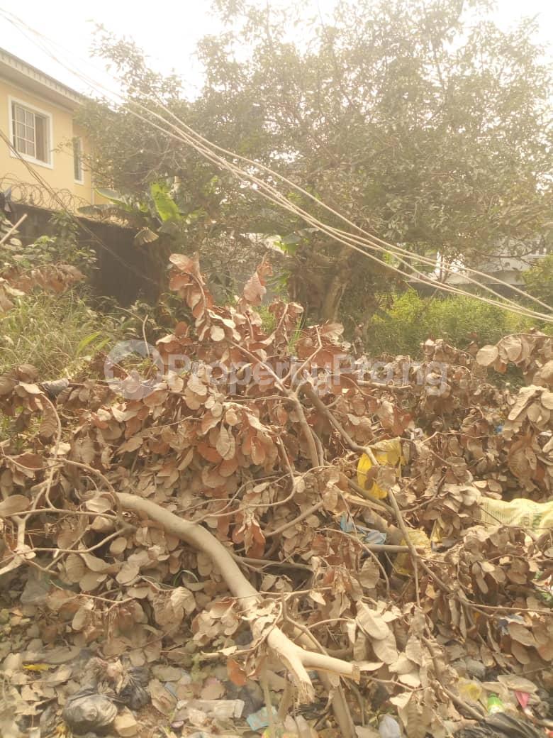 Residential Land Land for sale Fara Park, Majek Sangotedo Ajah Lagos - 3