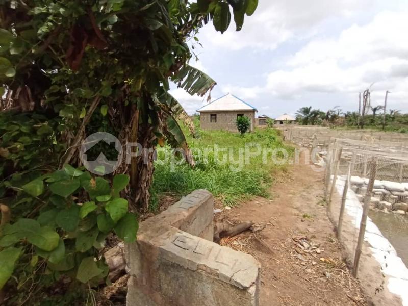 Residential Land for sale Itele Ogun State Ijebu Ogun - 7