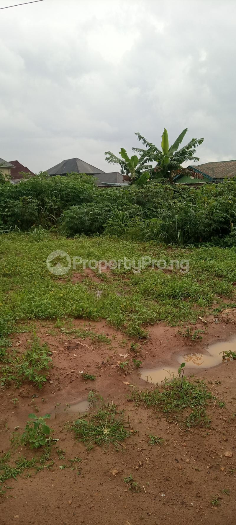 Residential Land for sale Road13, Av13 Fagun Estate Ondo Ondo West Ondo - 2