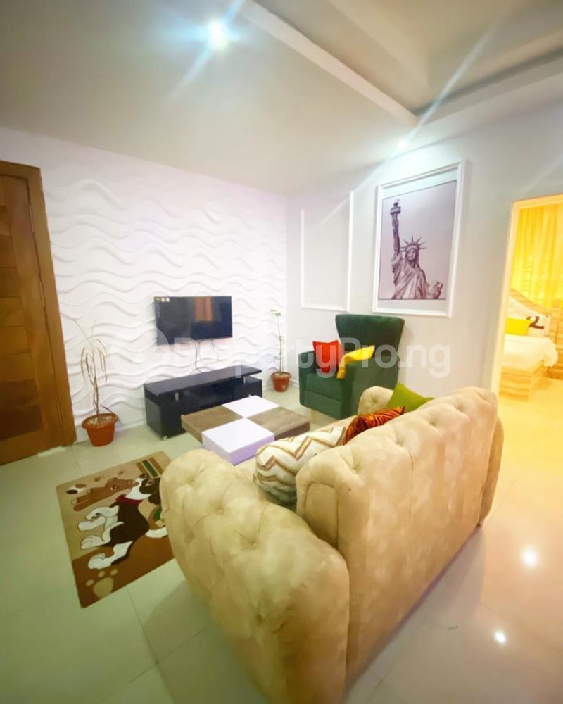 1 bedroom Mini flat for shortlet Ikate Ikate Lekki Lagos - 2