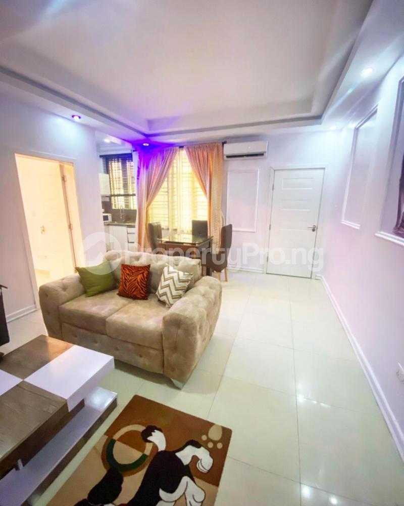 1 bedroom Mini flat for shortlet Ikate Ikate Lekki Lagos - 3