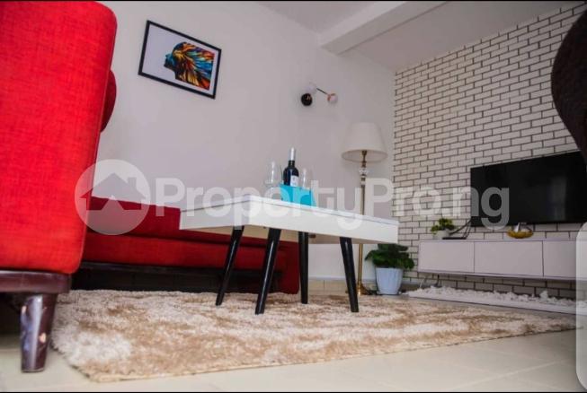 1 bedroom Mini flat for shortlet Asokoro Asokoro Abuja - 6