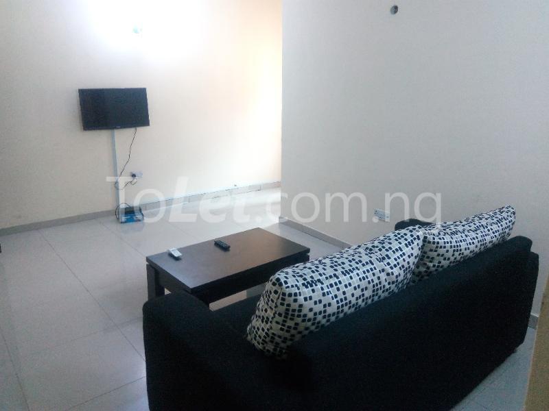1 bedroom mini flat  Self Contain Flat / Apartment for shortlet - Agungi Lekki Lagos - 11