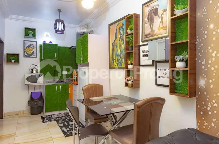 2 bedroom Self Contain for rent Ikate Lekki Lagos - 8