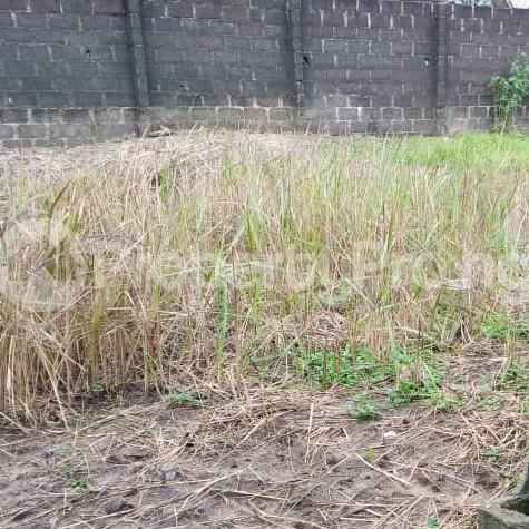 Mixed   Use Land Land for sale Trans Amadi Port Harcourt Rivers - 3