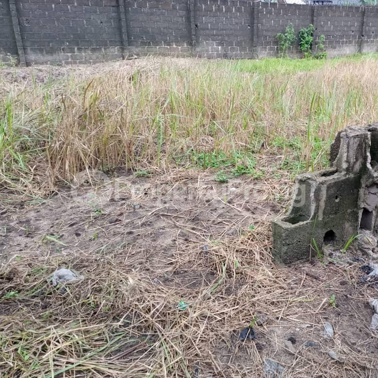 Mixed   Use Land Land for sale Trans Amadi Port Harcourt Rivers - 2