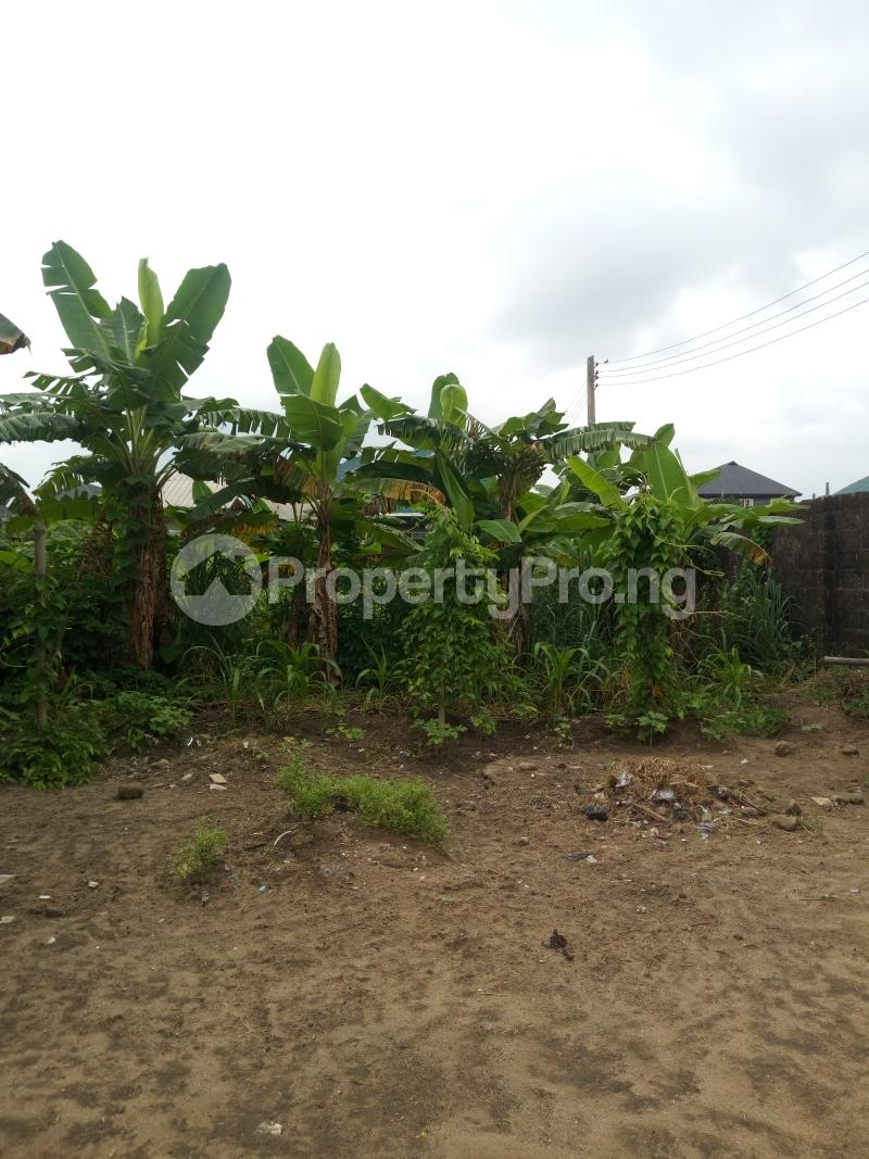 Commercial Land Land for sale New Rd Ada George Port Harcourt Rivers - 3