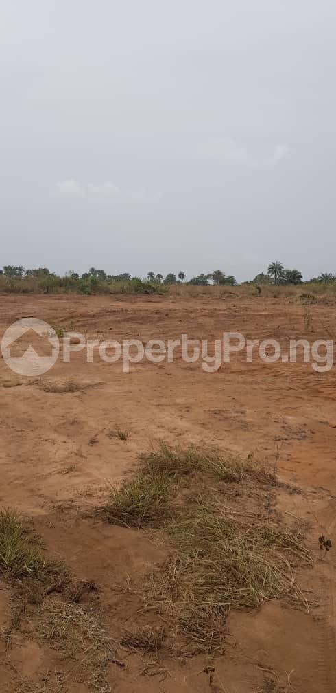 Residential Land Land for sale Cherrybay Ville Irete Owerri Imo - 3