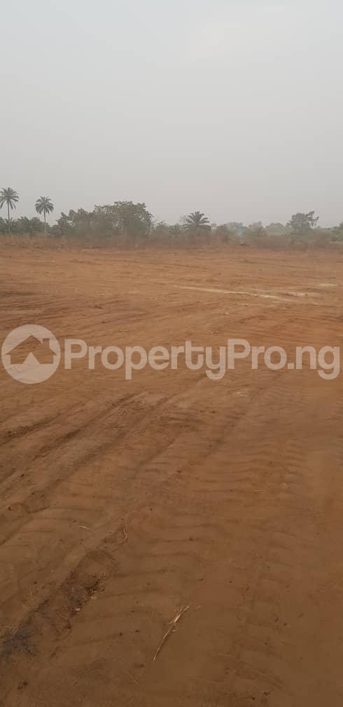 Residential Land Land for sale Cherrybay Ville Irete Owerri Imo - 10