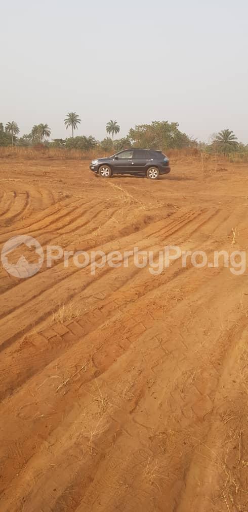 Residential Land Land for sale Cherrybay Ville Irete Owerri Imo - 6