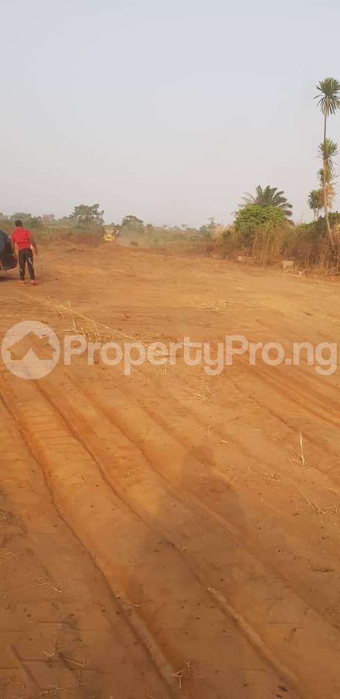 Residential Land Land for sale Cherrybay Ville Irete Owerri Imo - 9