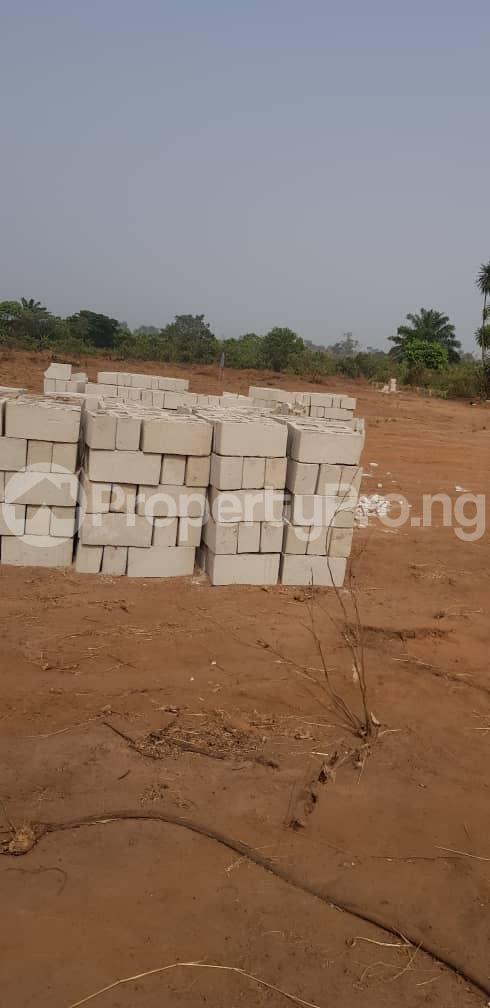 Residential Land Land for sale Cherrybay Ville Irete Owerri Imo - 1