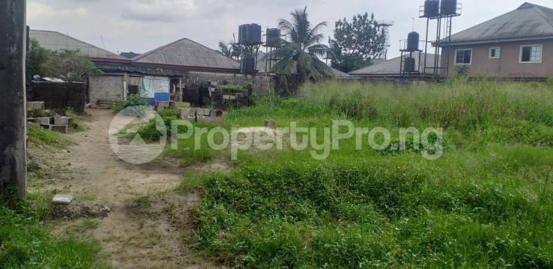 Mixed   Use Land Land for sale Rupkpokwu Port Harcourt Rivers - 0
