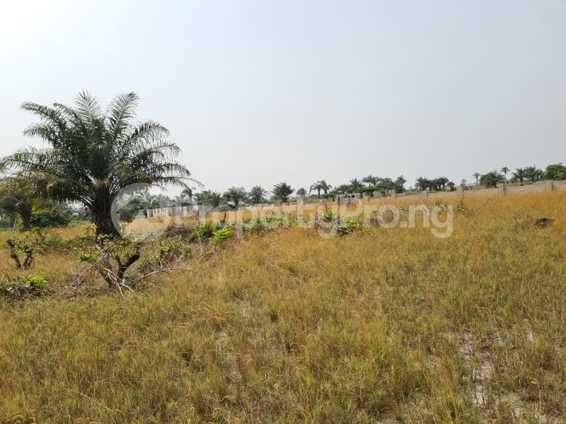 Mixed   Use Land Land for sale 5 Minutes From La Campagne Tropicana, Folu Ise Community Ise town Ibeju-Lekki Lagos - 6