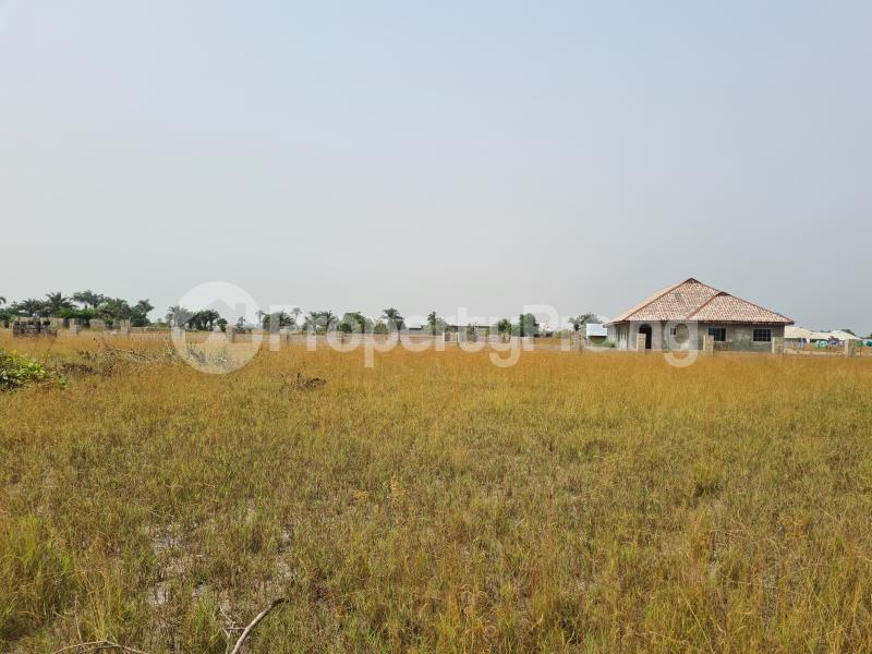 Mixed   Use Land Land for sale 5 Minutes From La Campagne Tropicana, Folu Ise Community Ise town Ibeju-Lekki Lagos - 4