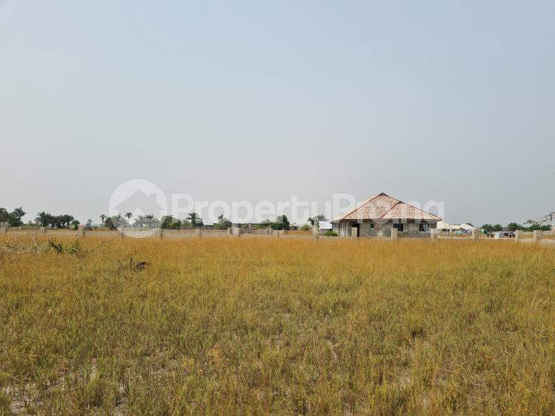 Mixed   Use Land Land for sale 5 Minutes From La Campagne Tropicana, Folu Ise Community Ise town Ibeju-Lekki Lagos - 5