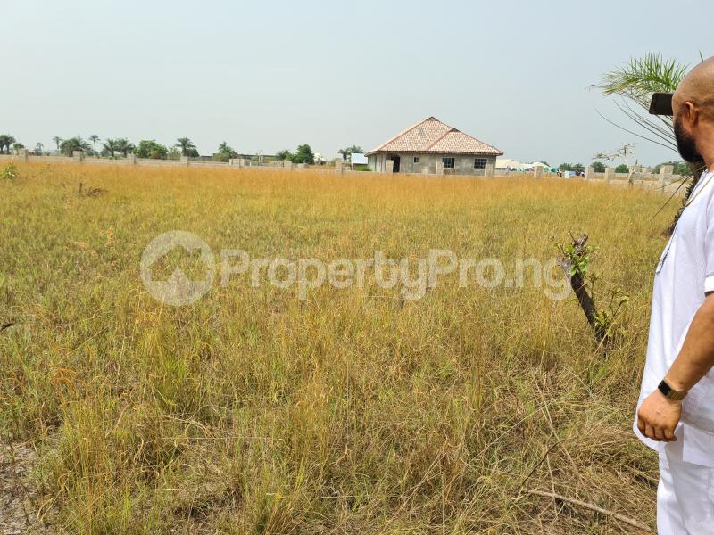 Mixed   Use Land Land for sale 5 Minutes From La Campagne Tropicana, Folu Ise Community Ise town Ibeju-Lekki Lagos - 3