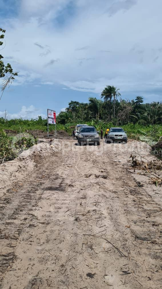 Residential Land Land for sale Lepia, Ibeju Lekki Mega City, After Eleko Eleko Ibeju-Lekki Lagos - 12