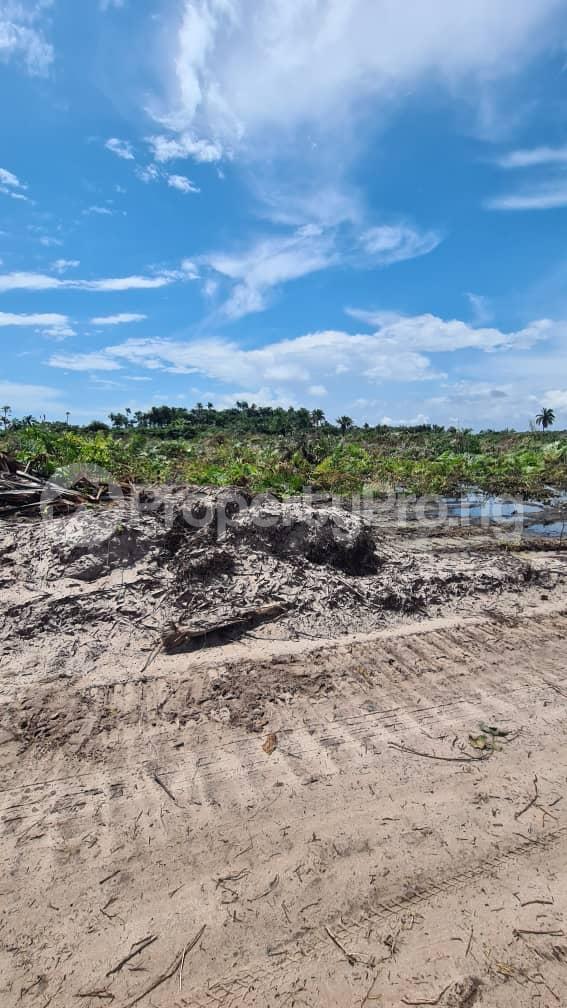 Residential Land Land for sale Lepia, Ibeju Lekki Mega City, After Eleko Eleko Ibeju-Lekki Lagos - 3