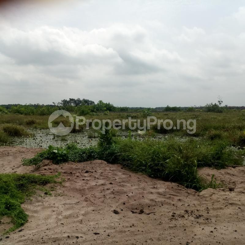 Mixed   Use Land for sale Oluwa Community Abijo Gra Abijo Ajah Lagos - 3