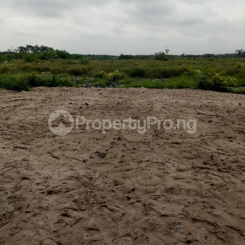 Mixed   Use Land for sale Oluwa Community Abijo Gra Abijo Ajah Lagos - 4