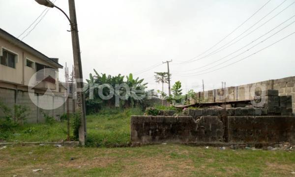 Residential Land for sale Good Homes Estate, Ado Road Ado Ajah Lagos - 6