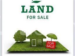 Land for sale Remi Ogunjimi Street Egbeda Alimosho Lagos - 0